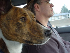 barkley going to his new home.JPG