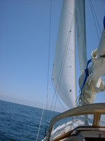july solo sail2.JPG