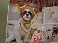 sf knitbook dog.JPG